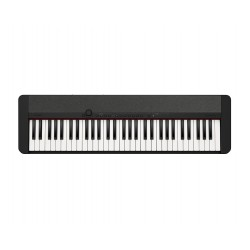 Casio CASIOTONE Keyboards