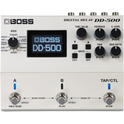 DD-500 Digital Delay