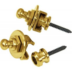 Strap Lock Security - Gold