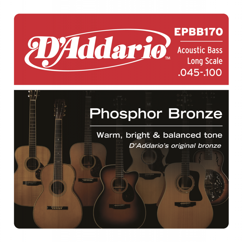 D'addario EPBB170 Phosphor Bronze 045-100 Corde Basse Acoustique