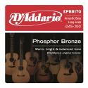 EPBB170 Phosphor Bronze 045-100