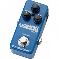 Flashback Delay Mini