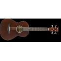 AVNB1E - Brown Violin Semi-Gloss