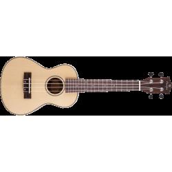 Prodipe Guitars BC320 EQ - Ukulélé Concert