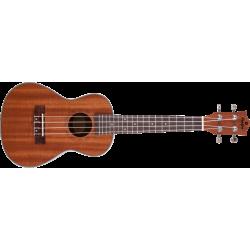 Prodipe Guitars BC2 - Ukulélé Concert