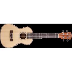Prodipe Guitars BC300 - Ukulélé Concert